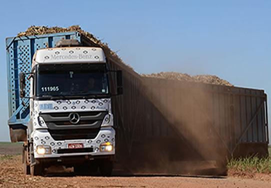 Budel Transportes