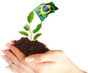 Budel Desenvolvimento Sustentável