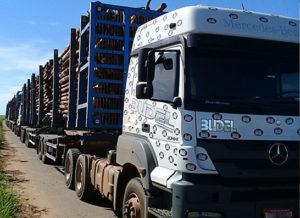 Caminhão para transporte madeireiro